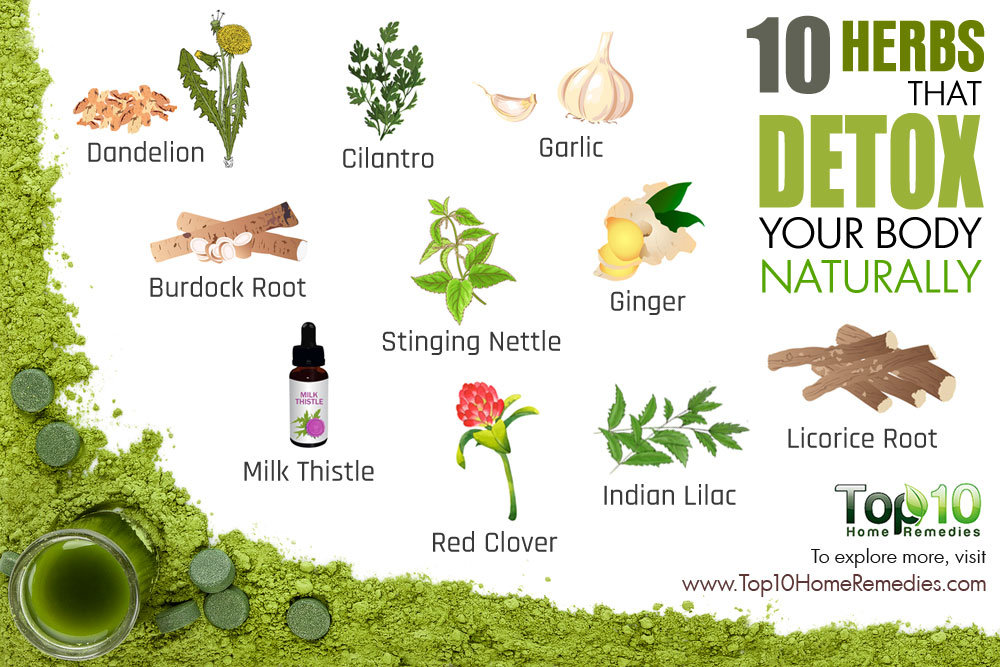 herbs detox
